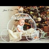 Джейн Z Ann новорожденных Подставки для фотографий детская железная Принцесса Экипаж Золушки опора, тыквенная карета Poser фотография, фото рек