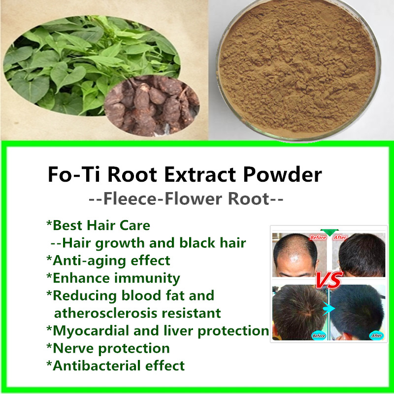 Easy Hair Care,FO-Ti Root Extract Powder,He shou wu,polygonum,For hair growth For gray hair,make hair black,factory supply
