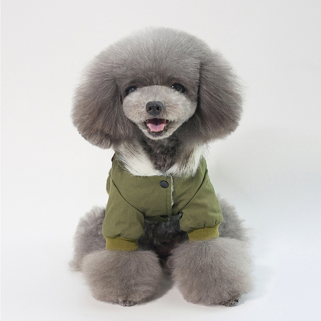 Dog clothes winter hooded padded jacket with small pockets solid color clothes Teddy dolls French bullfighting pet clothes