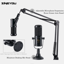 Newest Professional Condenser Microphone Studio Karaoke Sound Recording For Computer Mic Kit Stand Filter