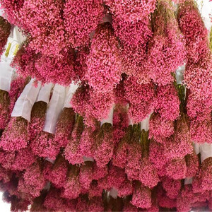 Image 1 - 1 Bundle 40 50CM DIY Gypsophila Flower Wedding Party Photo Props Pure natural plant Dried Flowers Cafe Library Home decoration