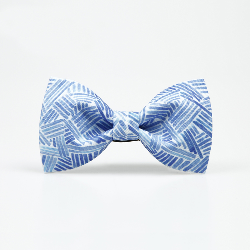Free Shipping New fashion male Bow tie men pale blue fresh art groom groomsman wedding host emcee graduate gift