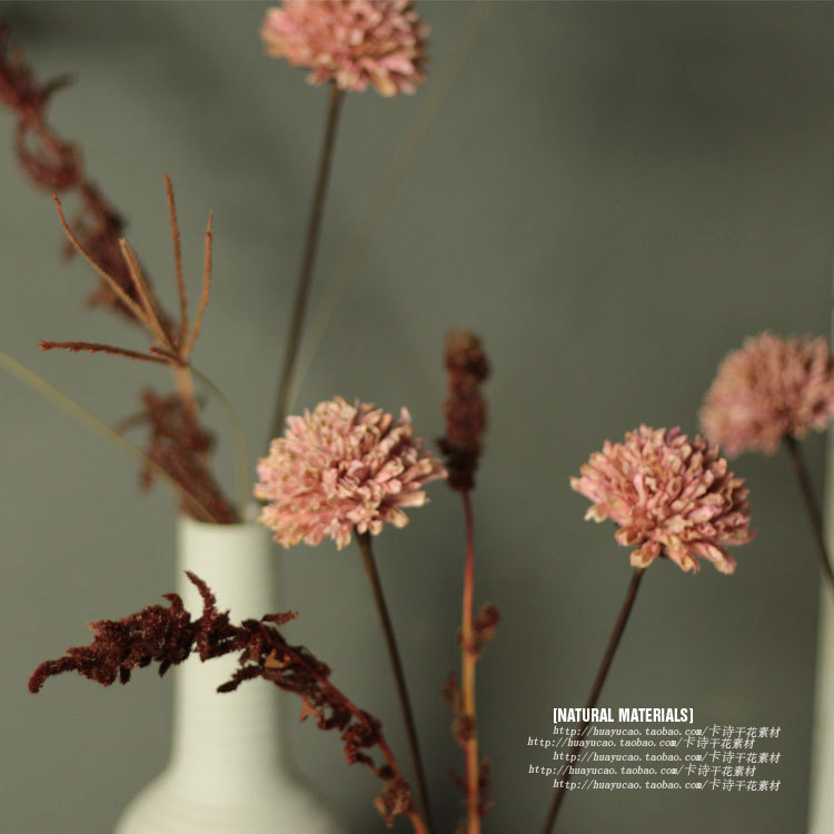 Online Buy Wholesale dried flower arrangements from China