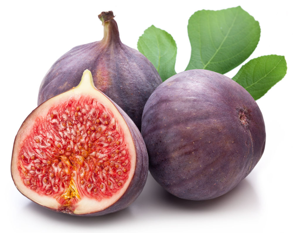 compare prices on fig fruit online shopping/buy low price fig, Beautiful flower