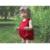 Bebê de verão de roupas recém-nascido Bodysuit sem mangas princesa do bebê para meninas