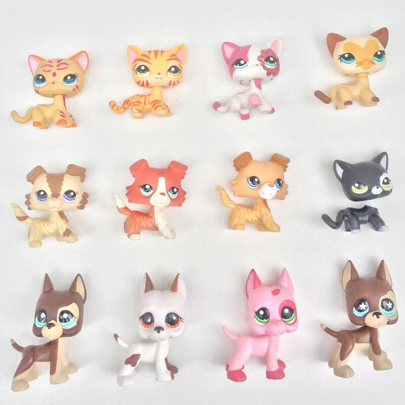 5pcs lot font b pet b font shop toys animal short hair cat collie great dane