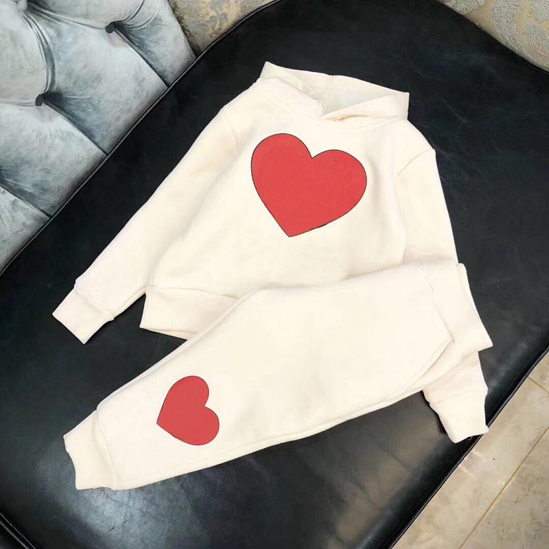 цена на Kid clothes Set thick tracksuit long sleeve hoodie+Pant 2 pcs for children winter casual clothes in middle of Nov