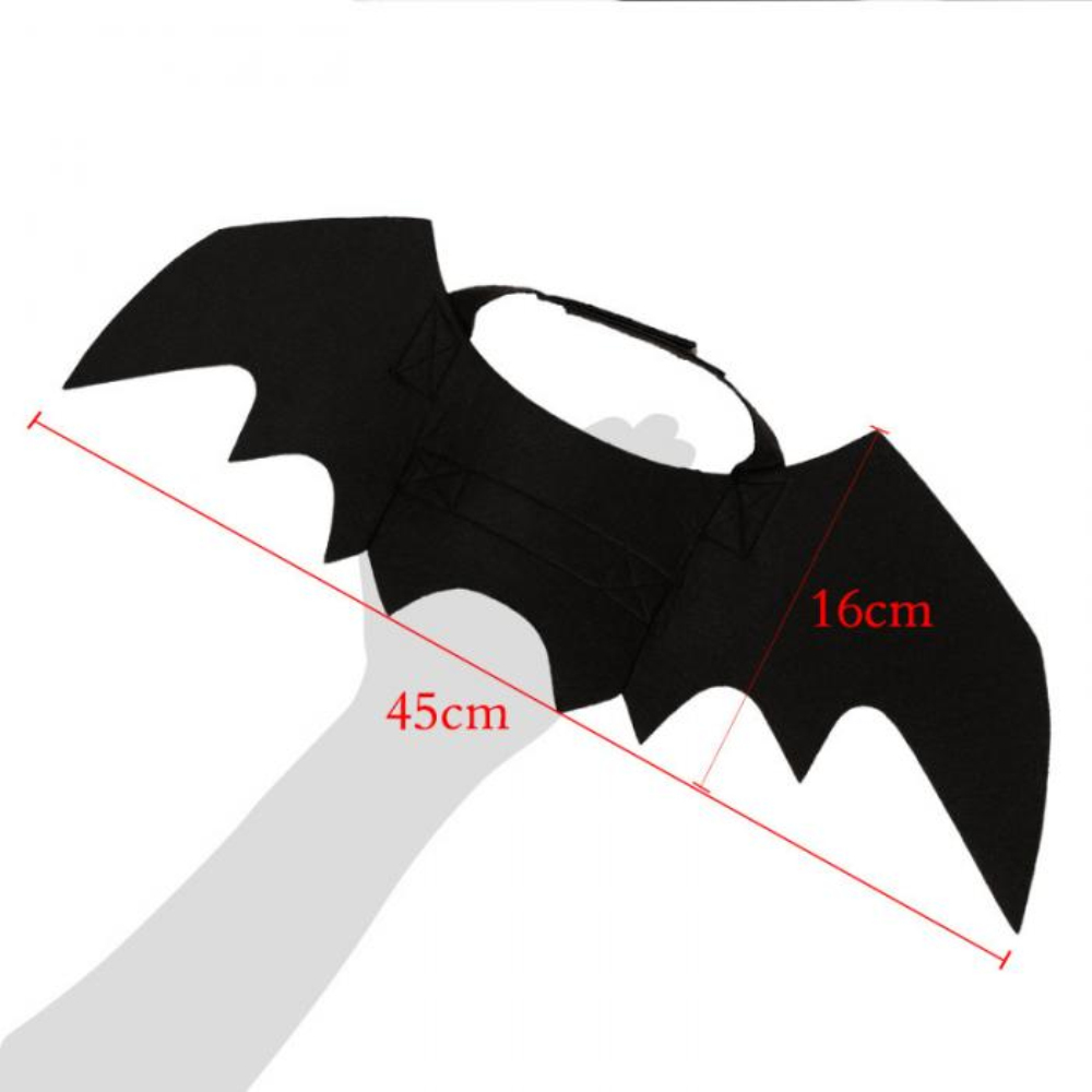 Halloween Cat Bat Costume 5