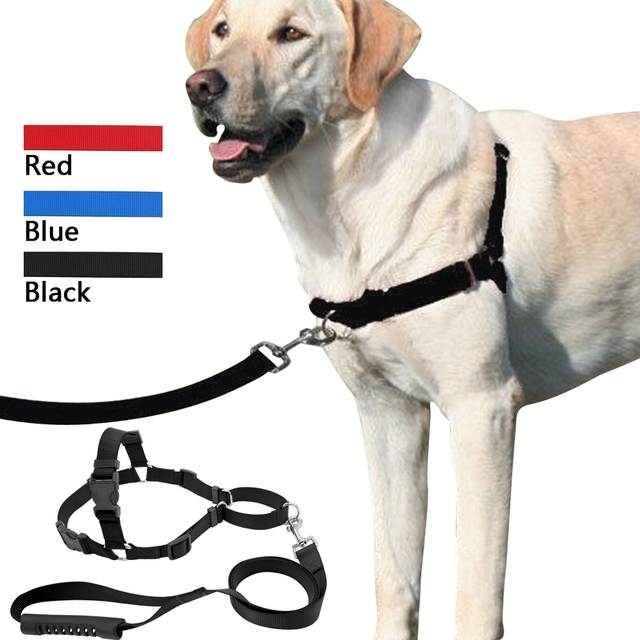 Pet No Pull Nylon Dog Harness With Leash Training Front Attachment Harness Stop Pulling On Lead_640x640 pet no pull nylon dog harness with leash training front attachment