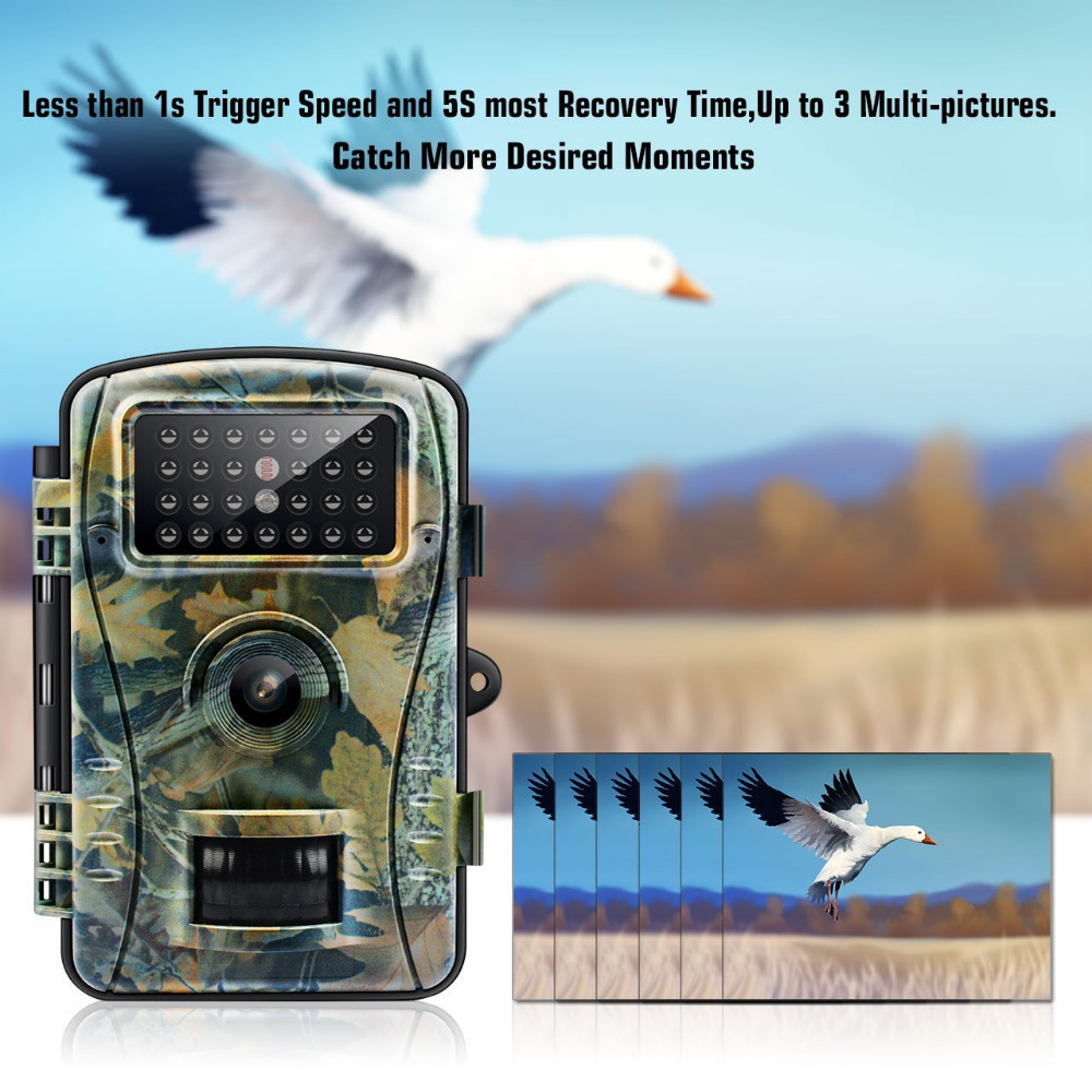 Câmera de caça do jogo da câmera