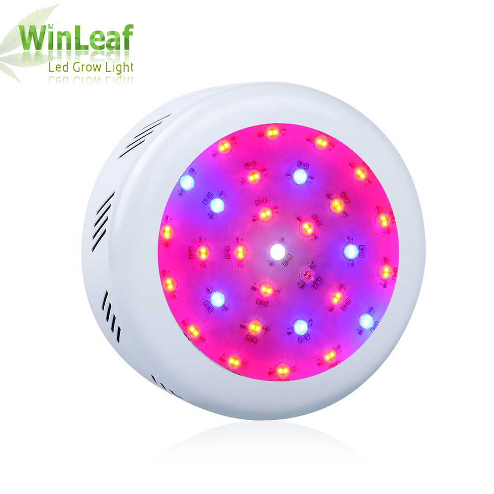 300W Ufo LED Grow Light Full Spectrum Lamp for Indoor Grow Tent Lighting Greenhouses Hydroponic LED Grow Light