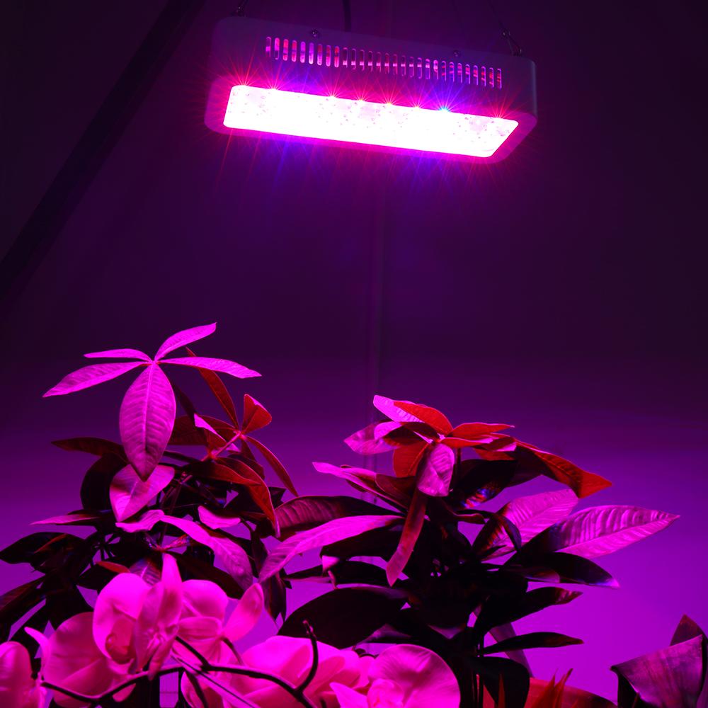 Full Spectrum LED Plant Grow Lights 20