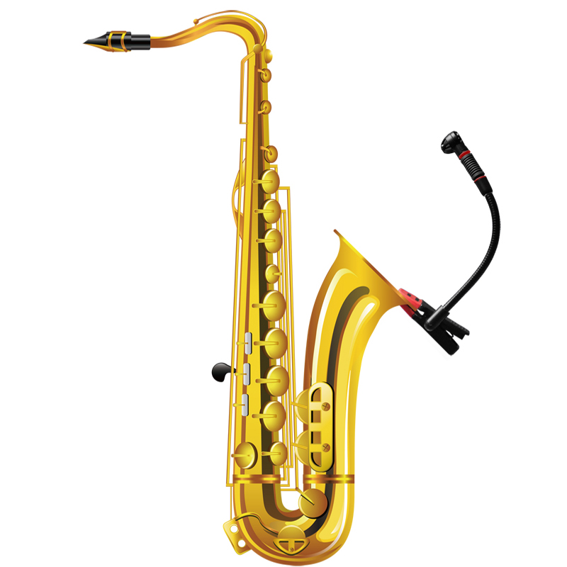 Alctron IM500 saxe microphone orchestra professional musical instruments microphone Unidirectional musical trumpet Saxophone mic saxophone microphone professional orchestra trumpet sax gooseneck musical instrument mic condenser microphone stage performance