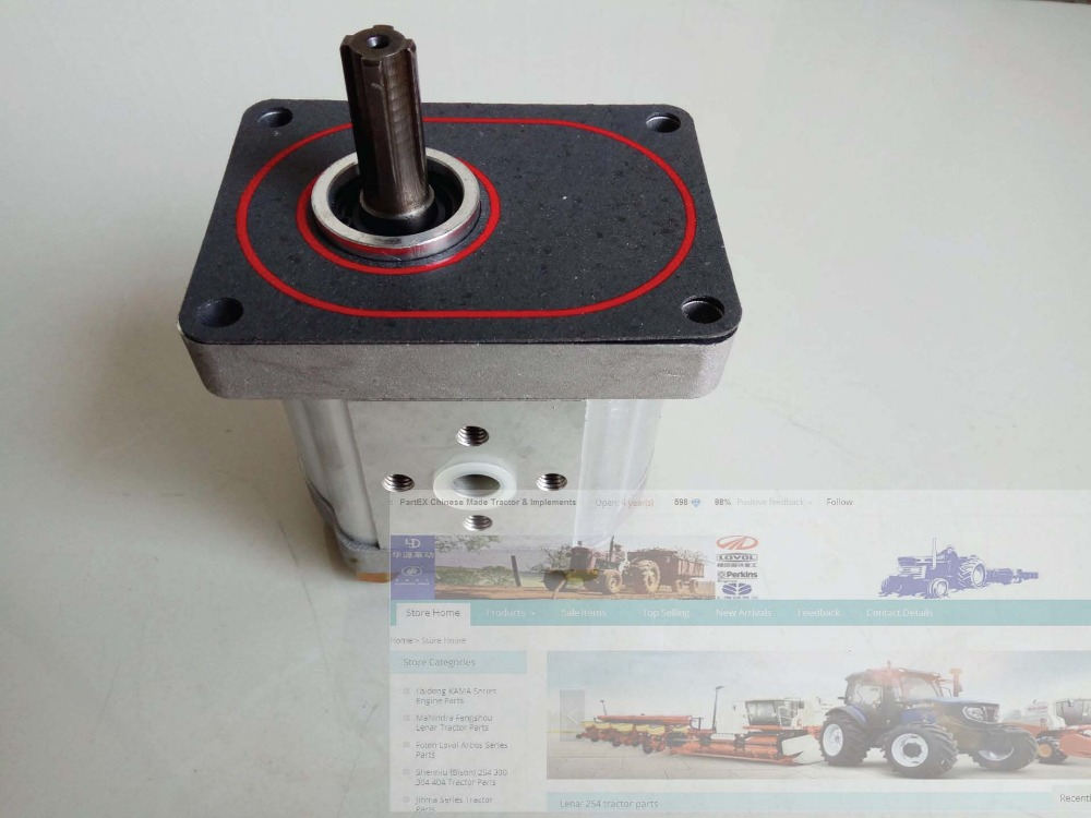 FT304.58L.010, the gear pump for Foton Lovol tractor FT304 для глаз catrice the modern matt collection eyeshadow palette 010 цвет 010 the must have matts variant hex name b19f9b