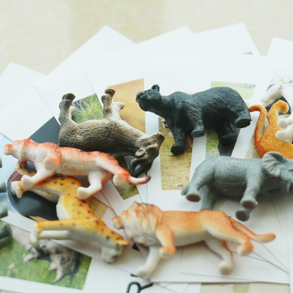 Купить с кэшбэком Montessori Infant Toys Montessori Animal Cards Language Materials Preschool Educational Learning Toys For Children YI3044H