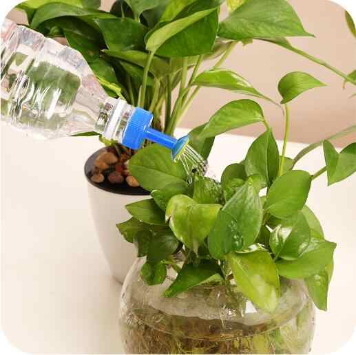 Party dobrodziejstw narzędzia ogrodnicze podlewanie kwiat mała dysza gospodarstw domowych przenośne pot podlewanie kwiat prysznic garnek usta