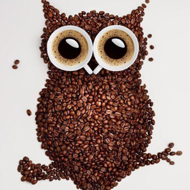 Coffee Beans Owl D Diy Diamond Painting Diy Diamond Painting Home Decoration Owl Wall Stickers Embroidery Needlework Dw