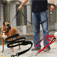 Durable Dog Leash With Soft And Thick Padded Double Handles Two Layers Premium Heavy Duty Nylon