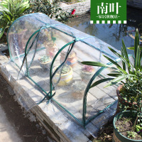 Balcony Small Meat Transparent Shed Light Strengthen The Meat Flower Glassfuls