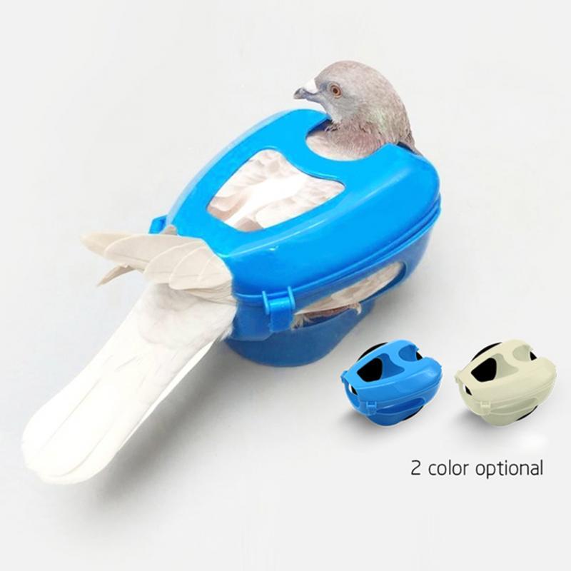 Plastic Racing Pigeon Holder Easy Bird Fixed Frame Rack Medicine Feeder
