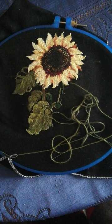 Aida 18ct 14ct 11ct | Point de croix, kit de plantes en tissu noir avec broderie, manuels de travaux