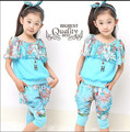 Retail Teenage Girls Clothes Summer Clothing Sets For Children wear to 2 4 6 8 10 12 Years, Baby Girl Elegant 2pcs Suits