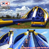 Garden Residential Hippo Inflatable Water Slide Rental With Durable Vinyl