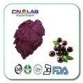 1 кг 10:1 органических acai берри экстракт свежих фруктов порошок оптом