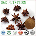Natural 100% pure Shikimic acid star anise extract 500g