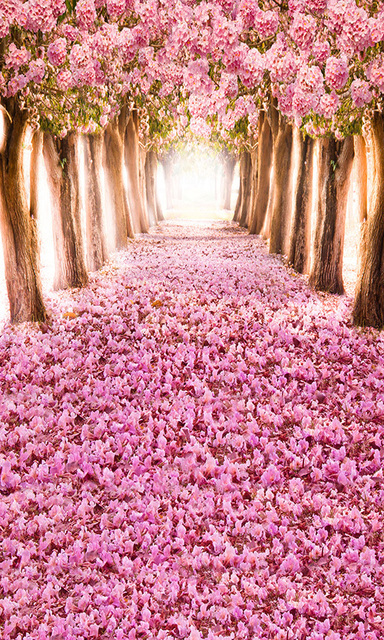 Online Shop 5x10ft Light Pink Flowers Floor Tunnel Passage