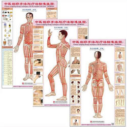 Китайский слом методы терапии с Стандартный настенные диаграммы набор из 3 шт. (передняя сторона задняя) гуа Ша настенные диаграммы