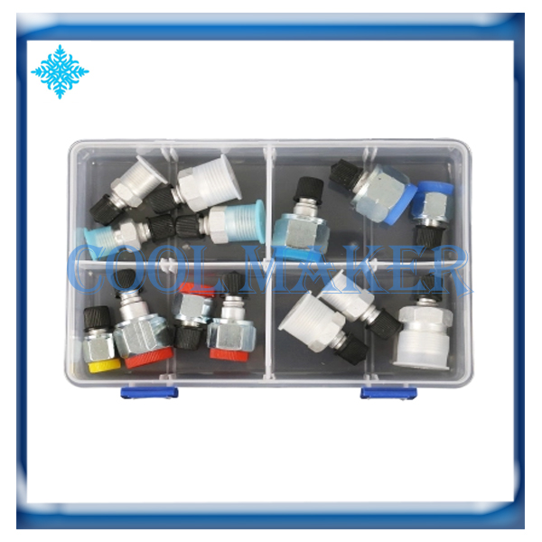 Auto Air Conditioner Leak Test Detection Plug Tool R134a