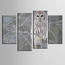 Beautiful canvas nature paintings living room Canvas Painting Wall Modern Pictures home decor Owl series art/ZT-3-74