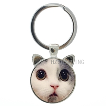 Novelty funny Surprised Cat keychain keyring cute Cockeyed Cat face photo glass metal key chain ring holder new idea gifts CN831(China (Mainland))