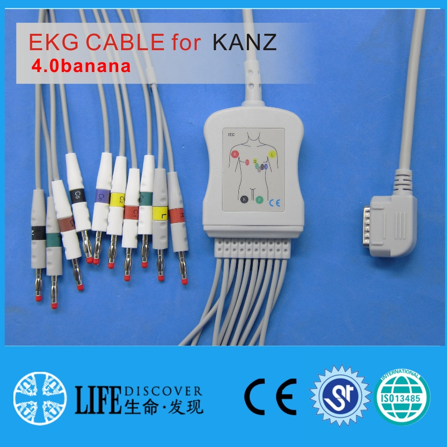 one piece EKG Cable with 10leads for KANZ ECG108,110 without resistanceone piece EKG Cable with 10leads for KANZ ECG108,110 without resistance