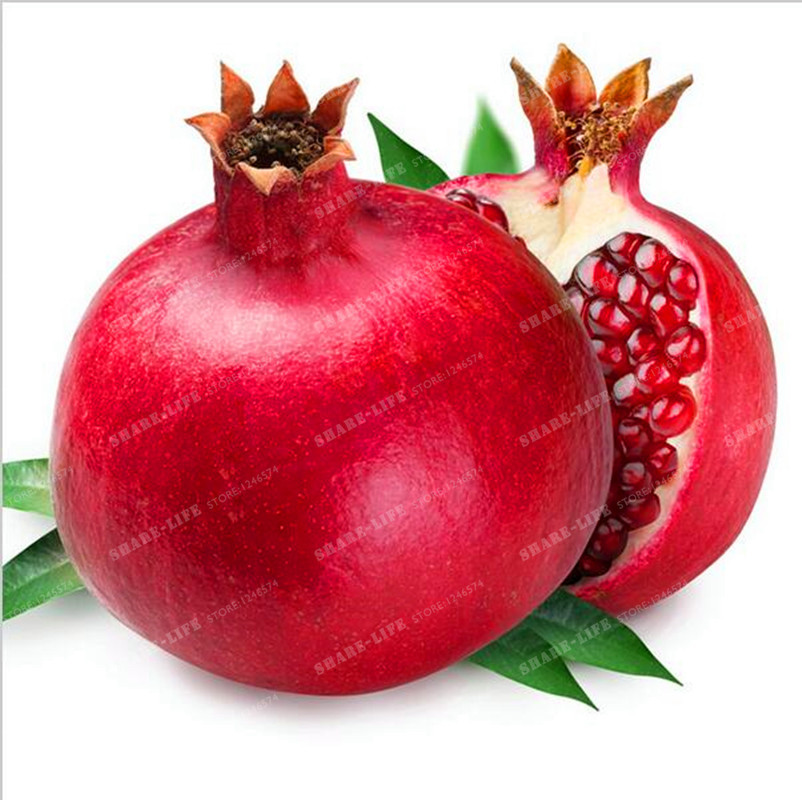 30 Particle//bag Giant Pomegranate Seed Home Plant Delicious Fruit Seeds Very Big