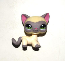 Pet Shop Animal crème gris cheveux courts chat Kitty poupée Figure enfant jouet(China)