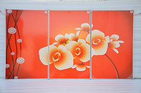 XFH 500W 3 1500W 60 100cm 3PCS Lot Free Shipping 3PCS Composition Of One Picture