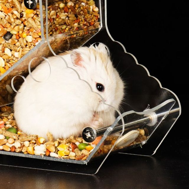 New Automatic Hamster Feeder Acrylic Food Feeding Dispenser for Guinea Pig Gerbil Pigeon 3