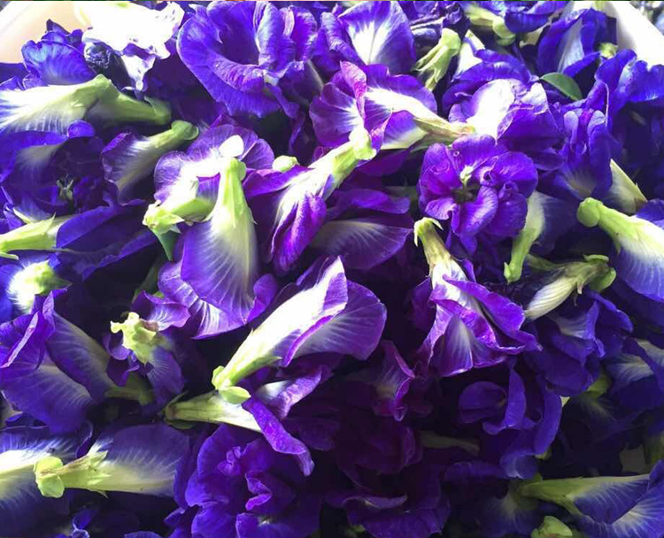 1bag 250g 500g Clitoria Ternatea Dry Flower Kitchen Toy.thailand Blue Butterfly Pea Tea Simulation Play House Toy.Vitamin A D11