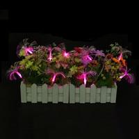 AC110V/220 V 10 M 100 LED Fibra Ottica Leggiadramente Della Stringa Della Luce Scintillio Della Luce per il Natale e Festa di Nozze Decorazione di Halloween