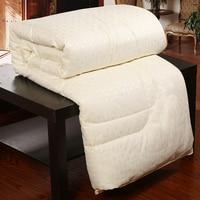 100% Silk Blanket Comforters Chinese Silk Comforter Summer Winter Silk Quilt Four Seasons Duvet Filling Mulberry Comforter