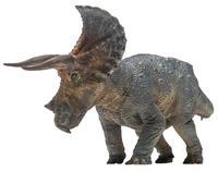גודל גדול דינוזאור טריצרטופס מודל חיה אוסף צעצועים קלאסיים לבנים ללא תיבה הקמעונאי