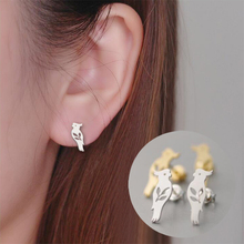 1pc Gold Silver Pink Parrot  Stud Earrings for Women E070