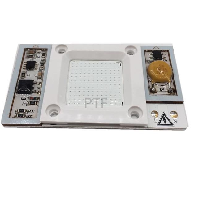 1pcs AC 220V 230V 240V High Power 50W led chip built-in driver Royal Blue 440-445nm LED chip for floodlight