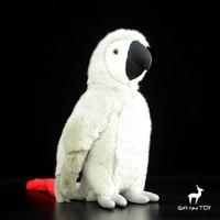 1 PIECE 25cm Cute Macaw Doll Simulation African Grey Parrot Plush Toy Plush Simulation Wild Animal