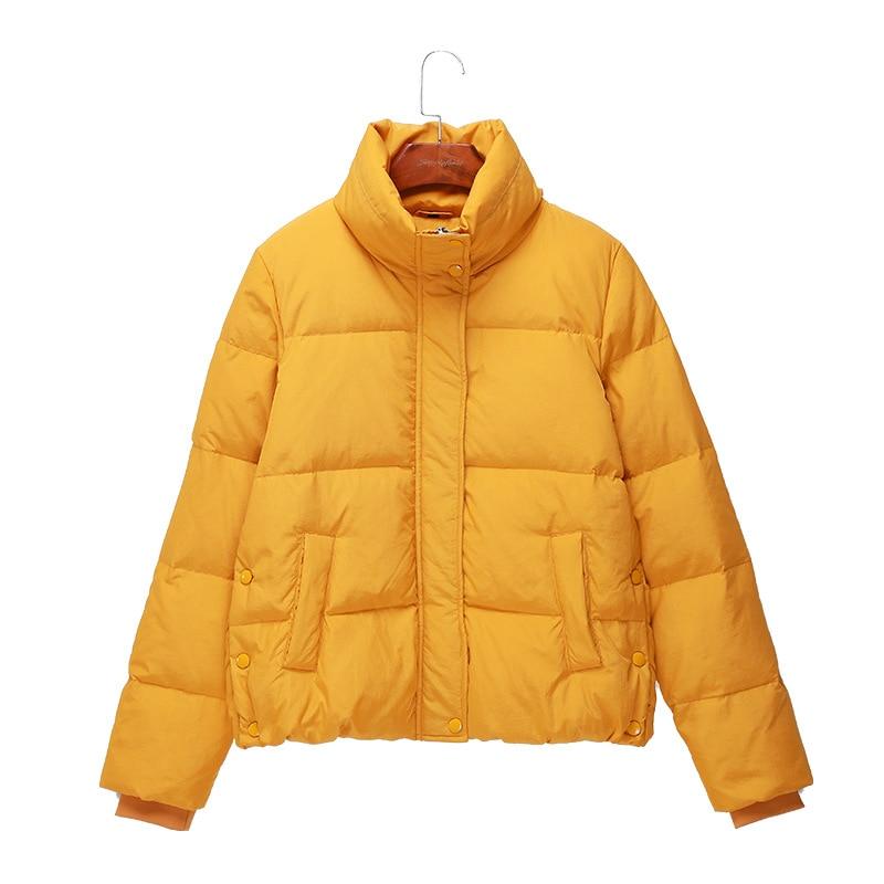 Simple Court Hiver Veste De Yellow Tops Montant Canard 2018 Conception noir Épais Coréenne Manteau Femme Duvet apricot Casual Col Mode 8xr80Z
