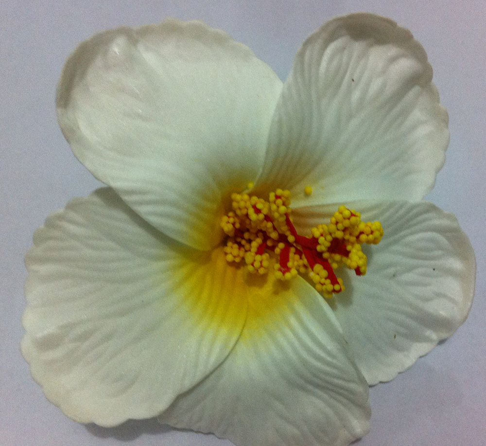 36pcs free shipping mixed colors foam hawaiian flower hibiscus 36pcs free shipping mixed colors foam hawaiian flower hibiscus flower bridal hair clip 9cm in hair accessories from womens clothing accessories on izmirmasajfo