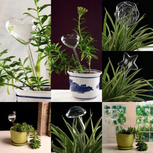 6 Types Glass Plant Flowers Water Feeder Self Watering Bird Star Heart Design Plant Waterer In Home Garden
