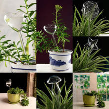 6 Types Glass Plant Flowers Water Feeder Self Watering Bird Star Heart Design Plant Waterer In Home Garden(China)